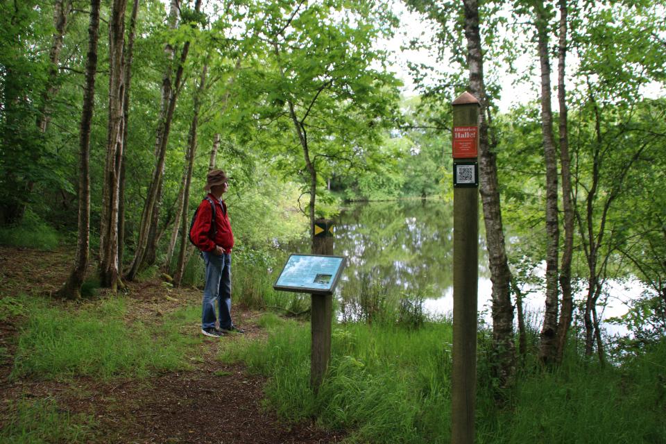 Место находки человека из Граубалле - болото Nebel mose