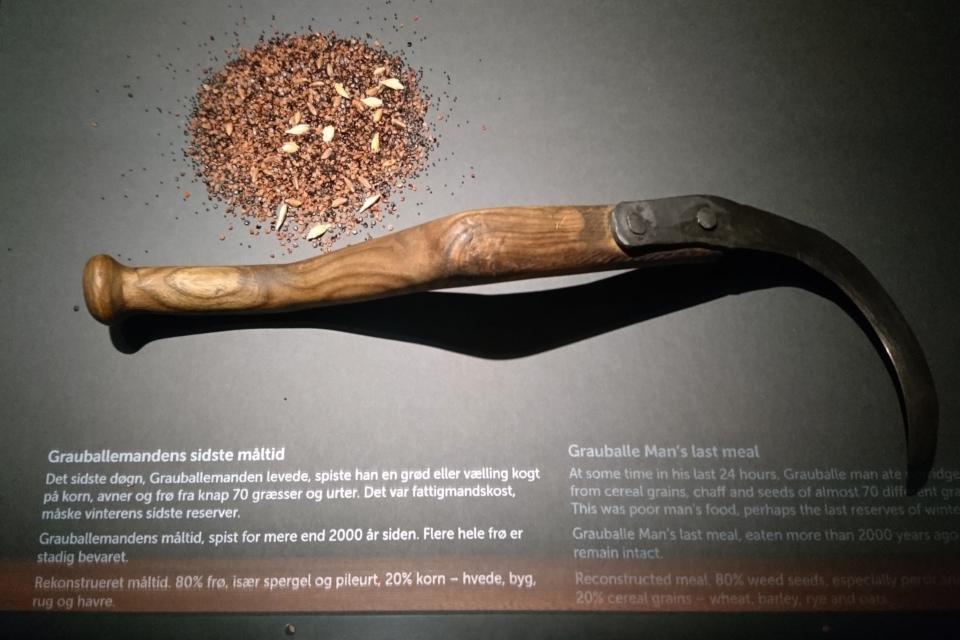 Реконструкция пищи, которую последний раз съел человек из Граубалле