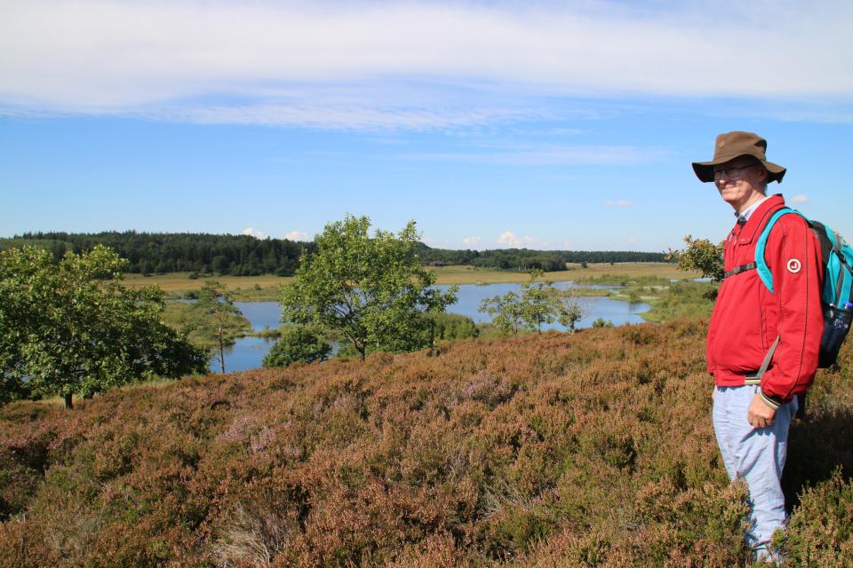 Вид на озеро Бёллиг с холма, поросшего вереском (лат. Calluna vulgaris)