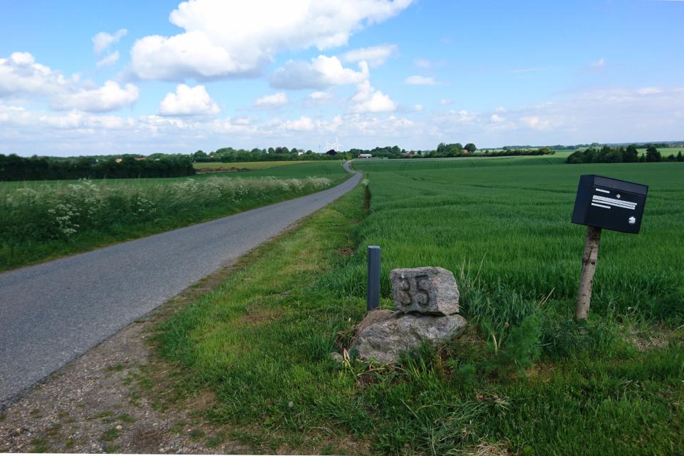 Почтовый ящик возле тропинки, ведущей через поле к дому фермера