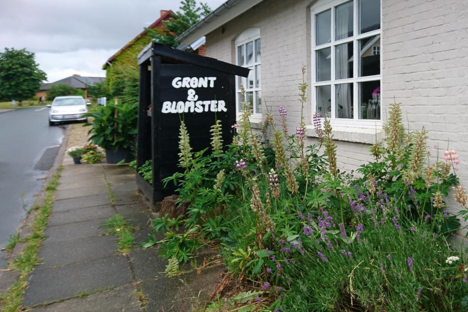 """Торговый лоток возле дороги с вывеской """"овощи и цветы"""" (дат. """"grønt & blomster"""")"""