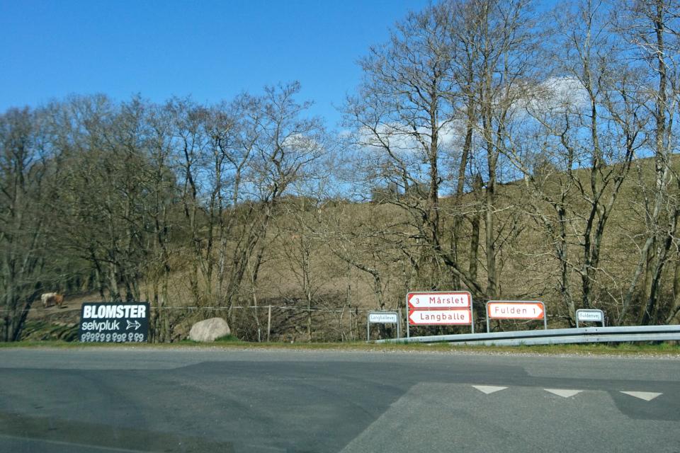 Самосбор цветов (дат. Blomster selvpluk) рекламная вывеска возле дороги