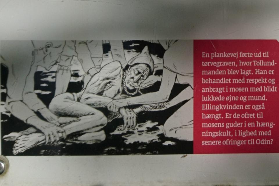 Иллюстрация с информационного щита про человека из Толлунда