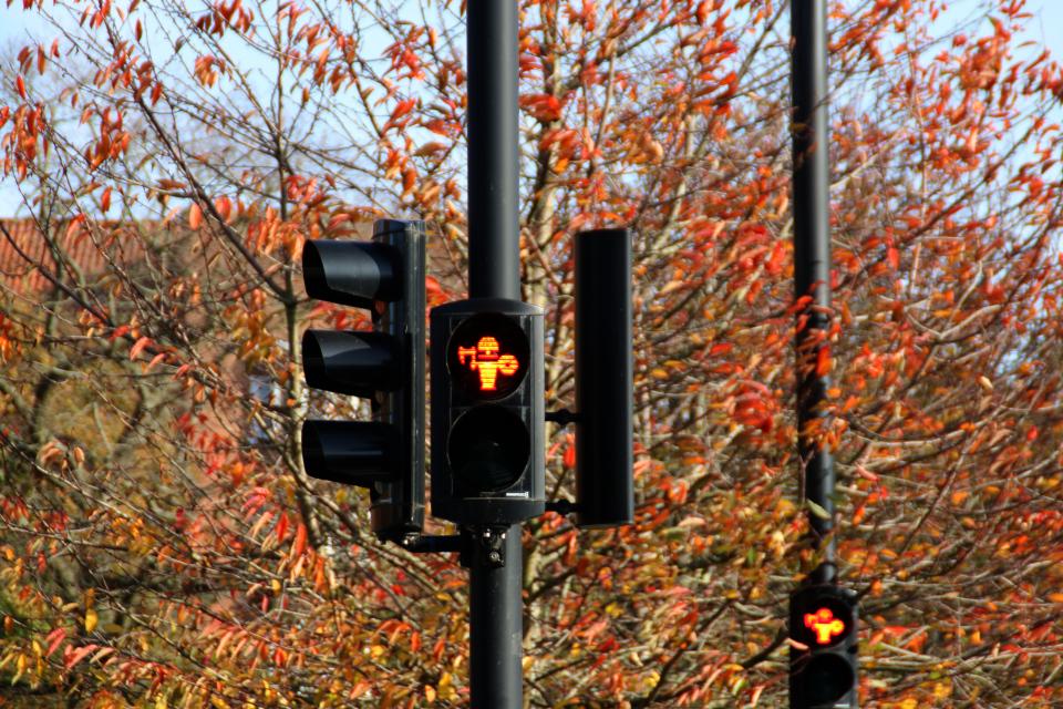 Викинги на светофорах в Орхусе. Фото 28 окт. 2020, ул. Vester Alle, г. Орхус, Дания
