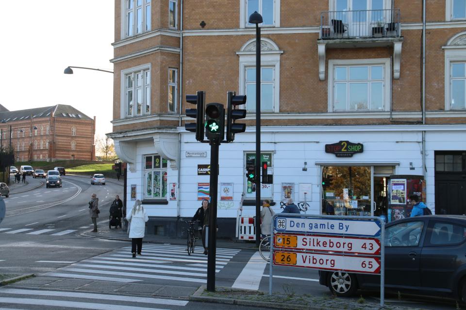 Светофор с викингом на улице Thorvaldsengade, г. Орхус, Дания