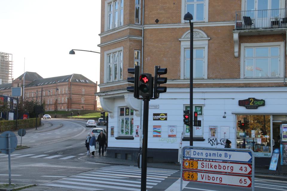 Светофор с викингом на улице Thorvaldsengade, г. Орхус, Дания. Фото 28 окт. 2020