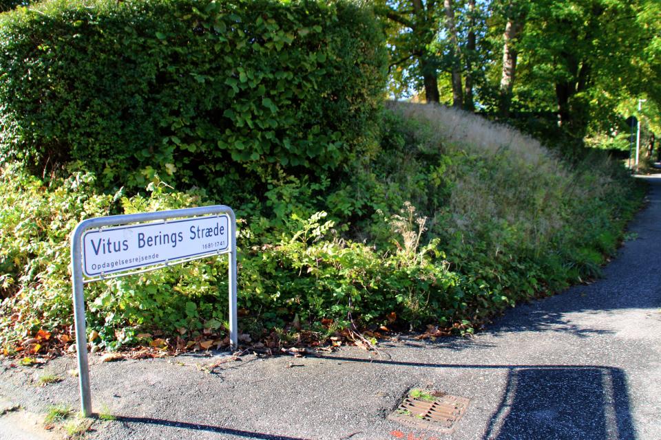 Улица Витуса Беринга, вдоль которой сохранились бомбоубежища