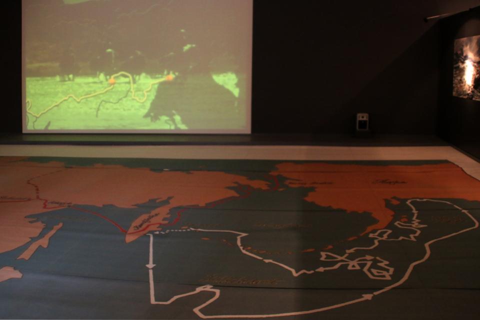 схемы маршрутов Витуса Беринга во время экспедиций