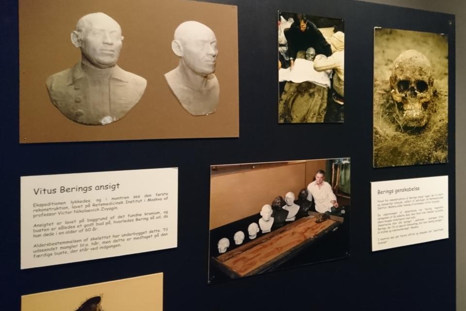 Фотография черепа Витуса Беринга (справа)