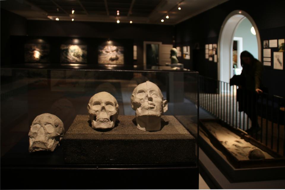 головы Витуса Беринга, музей г. Хорсенс, Дания
