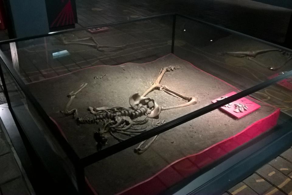 Скелет на месте находки в 1963 году