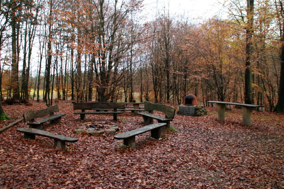 Место для костра со скамейками в лесу охотничьих угодий