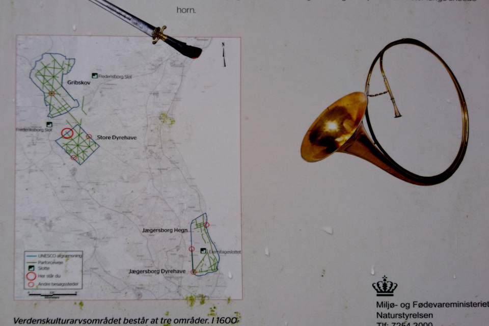 Три леса - охотничьи угодья Северной Зеландии, отнесенные к ЮНЕСКО