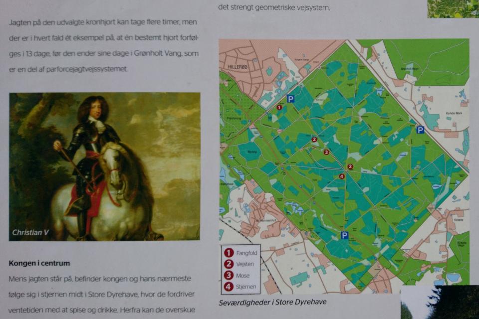 Портрет короля Кристиана V и карта Большого парка животных