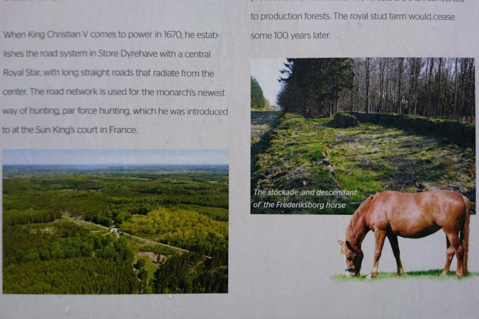 фермa по разведению лошадей, Охотничьи угодья в Северной Зеландии