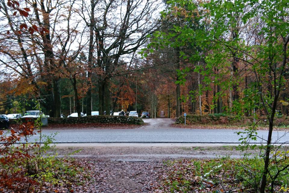 """Вид на """"Большой парк животных"""" со стороны дороги Overdrevsvejen"""