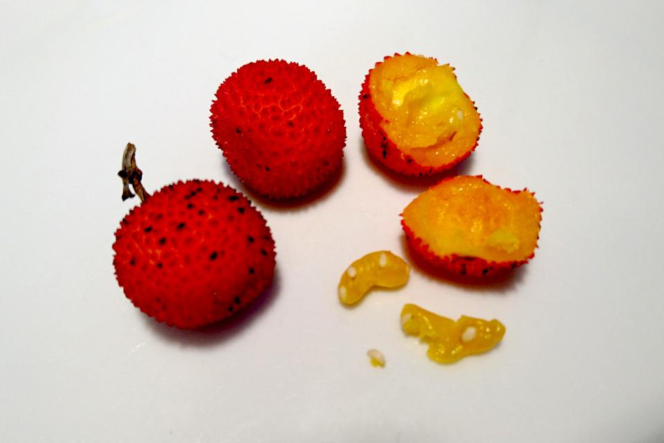 Плоды земляничного дерева с мелкими семенами