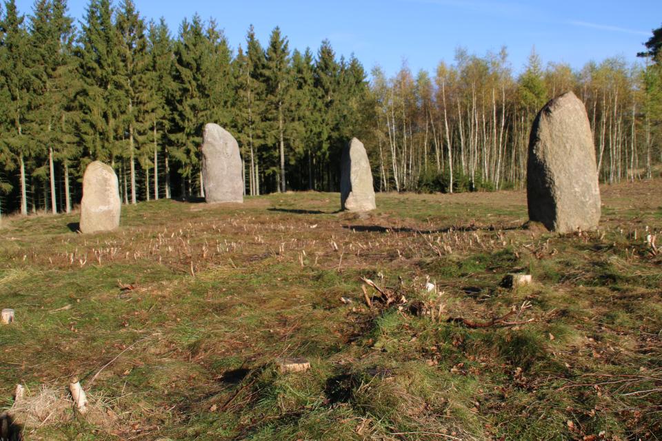 Центральная часть каменного корабля с остатками удаленных деревьев