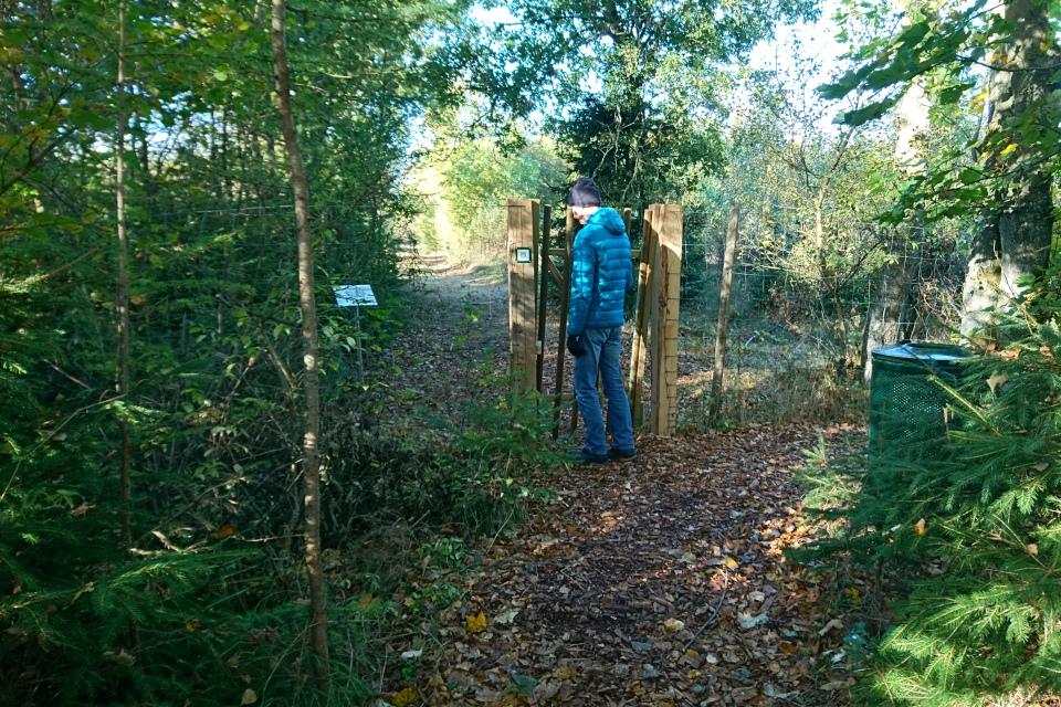 Калитка у входа на плантацию, г. Вейерслев / Vejerslev, Дания