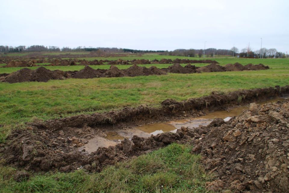 Археологические раскопки. Фото 29 ноя. 2020