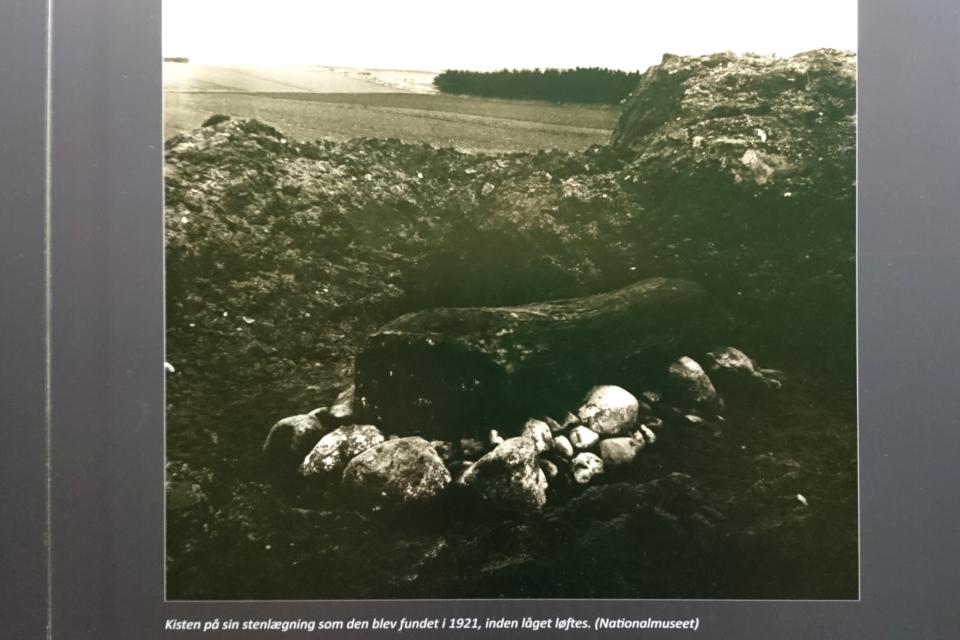 Девушка из Эгтвед - место находки. Фото 7 июл. 2020