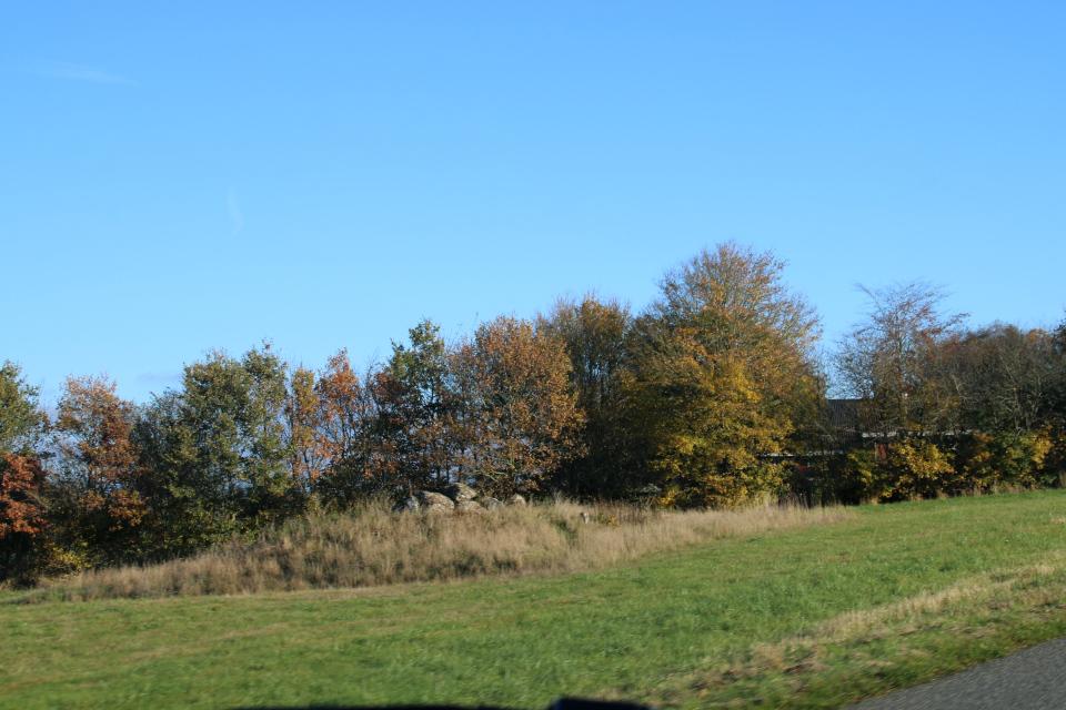 Заросший травой дольмен Ормслев, увиденный из машины, Дания