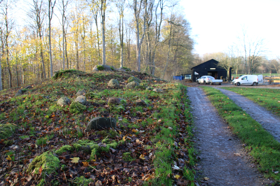 Дорога к подсобным помещениям конного центра