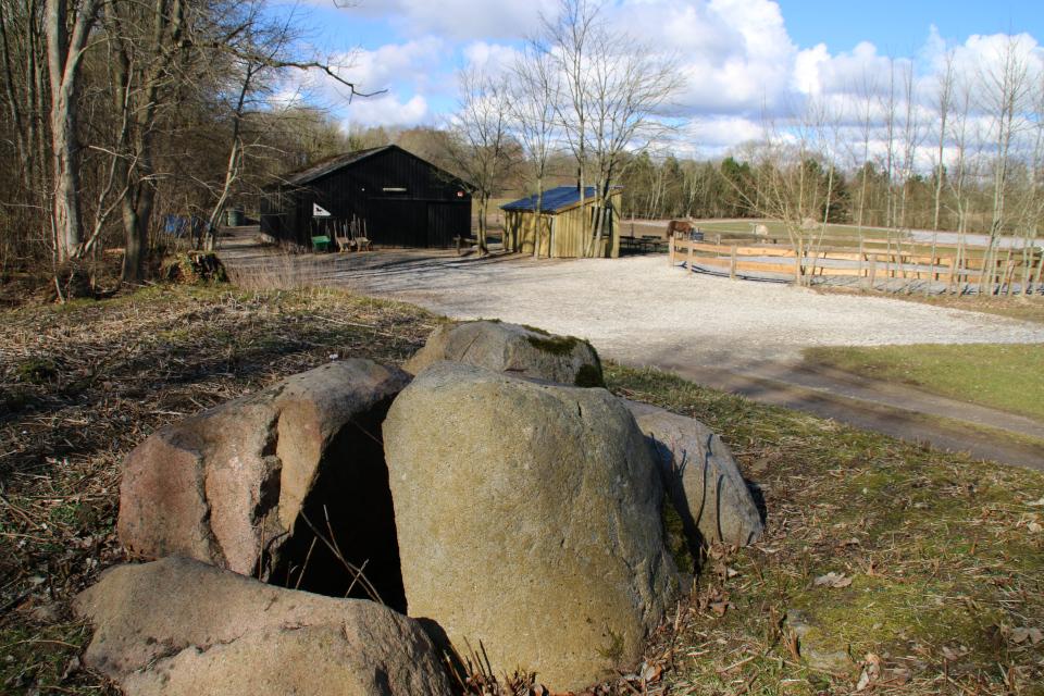 Погребальная камера дольмена. Фото17 мар. 2021, г. Морслет, Дания