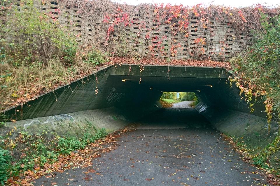Туннель в Холме, Håndværkerparken. 24 окт. 2020, Дания