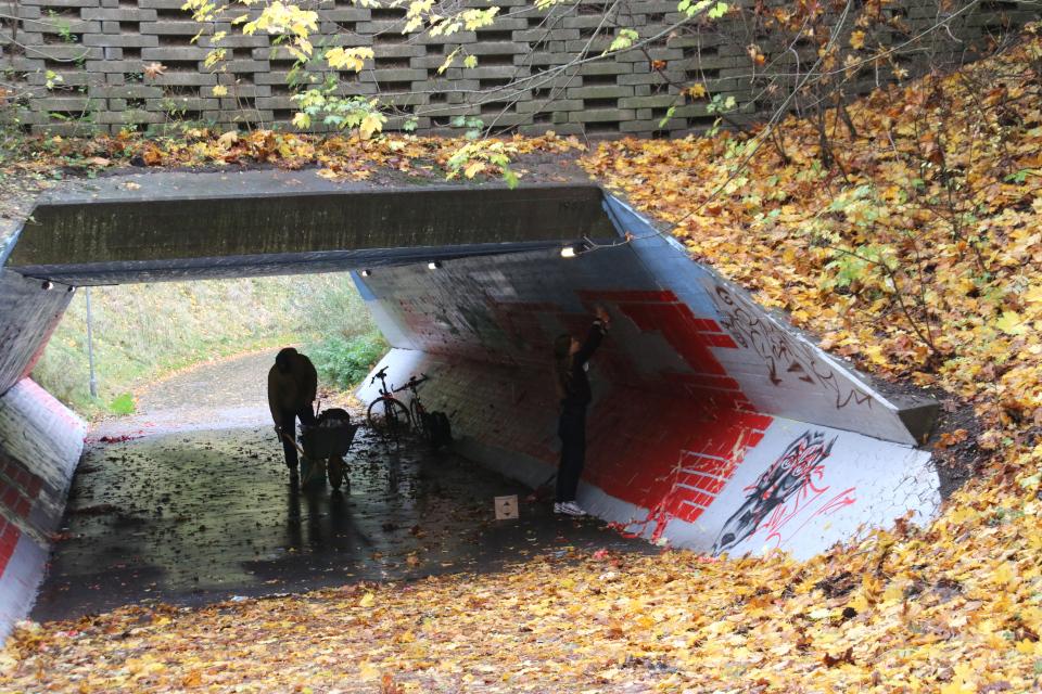 Тоннель в Холме, Anton Borg Hjort и Ekaterina Poliakova, 2 нояб. 2020, Дания