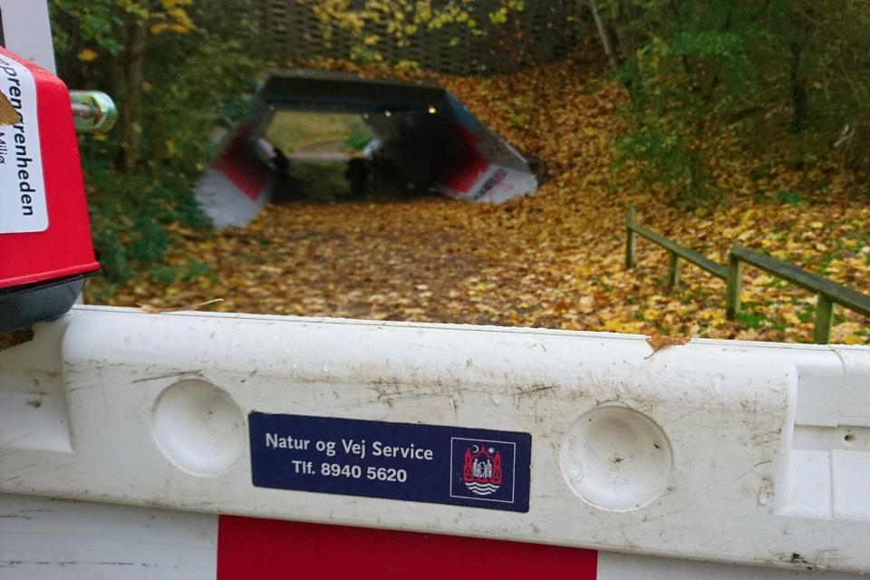Туннель в Холме, Håndværkerparken. 2 нояб. 2020, Дания