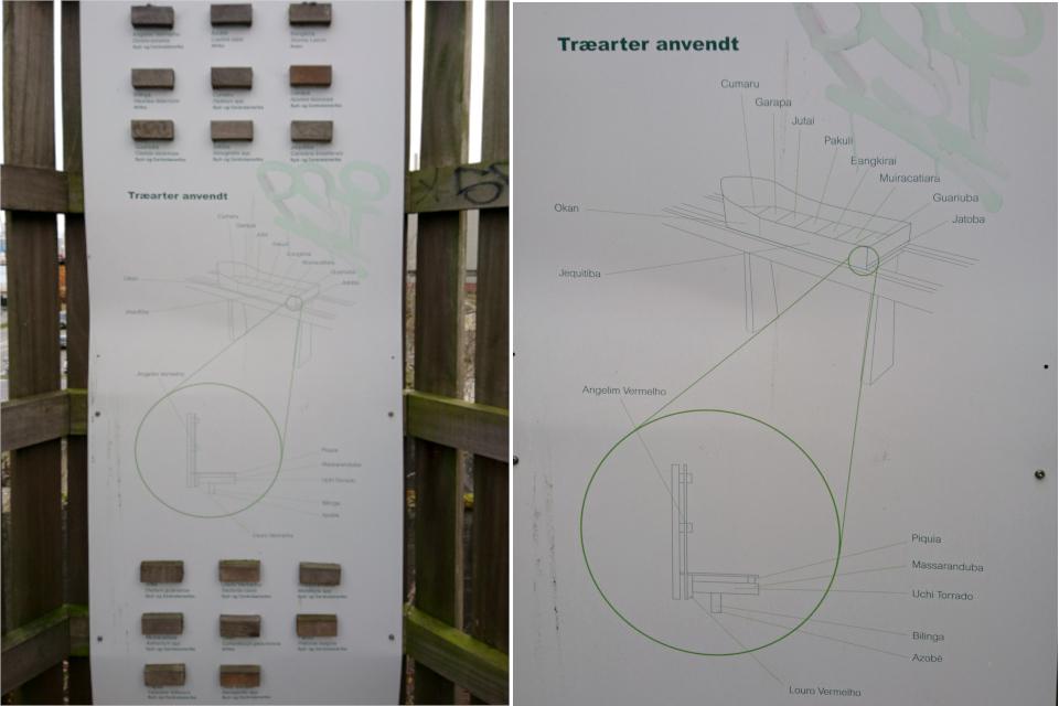 Древесина тропических растений. Орхус, Дания. 18 нояб. 2020