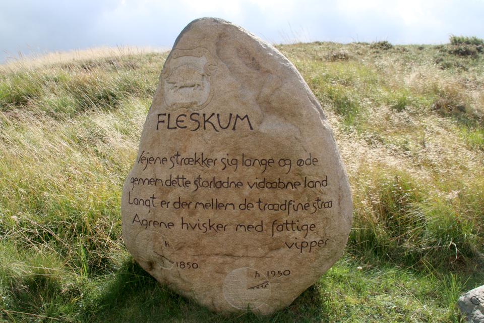 Памятный камень округа Флескум (Fleskum), на гербе и печатях которого с 1584 и 1648 гг. изображалась свинья. Фото 12 сент. 2021, Kongenshus Mindepark, г. Виборг, Дания
