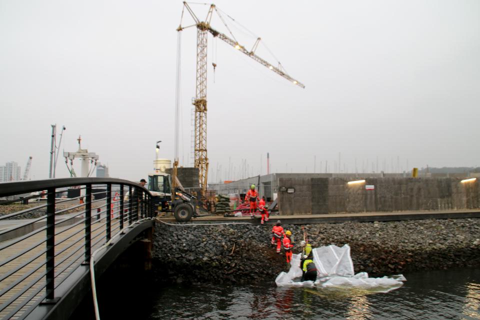 Вайле порт, Дания, 12 нояб. 2020