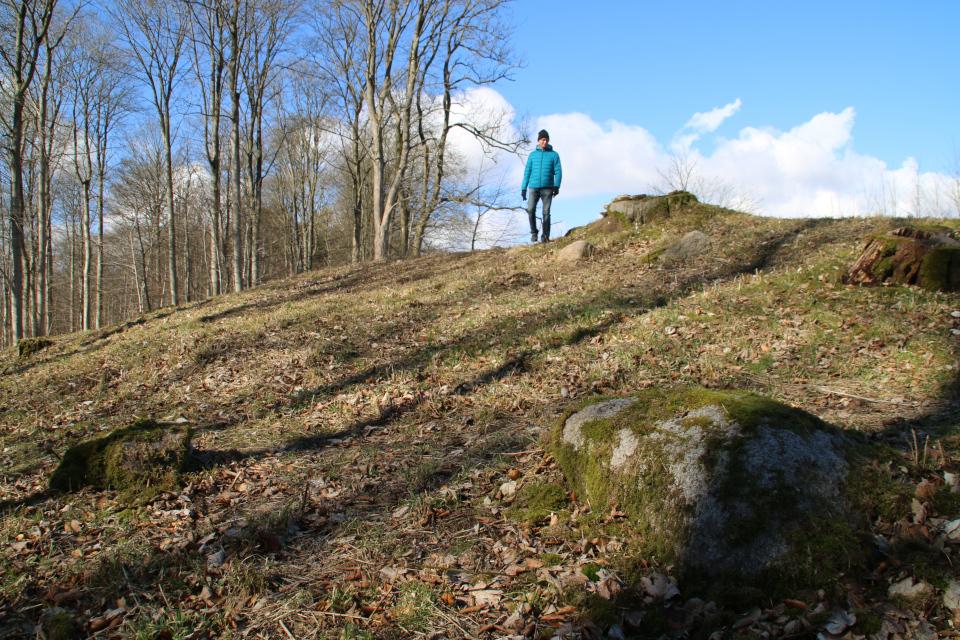Камень, возможно, оставшийся от кромлеха мегалита