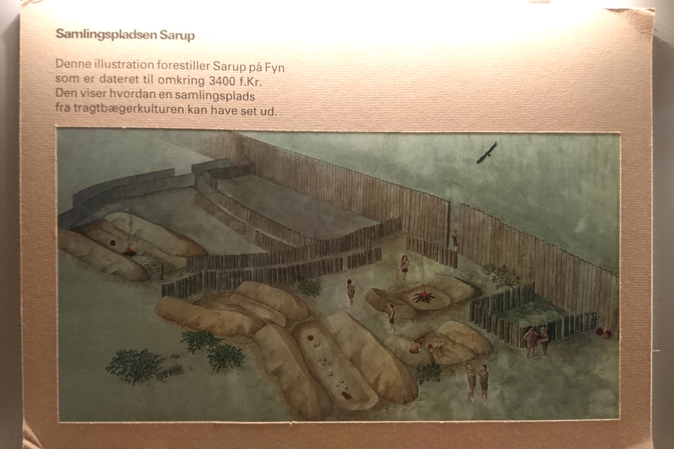 Иллюстрация посления культуры воронковидных кубков на основе раскопок