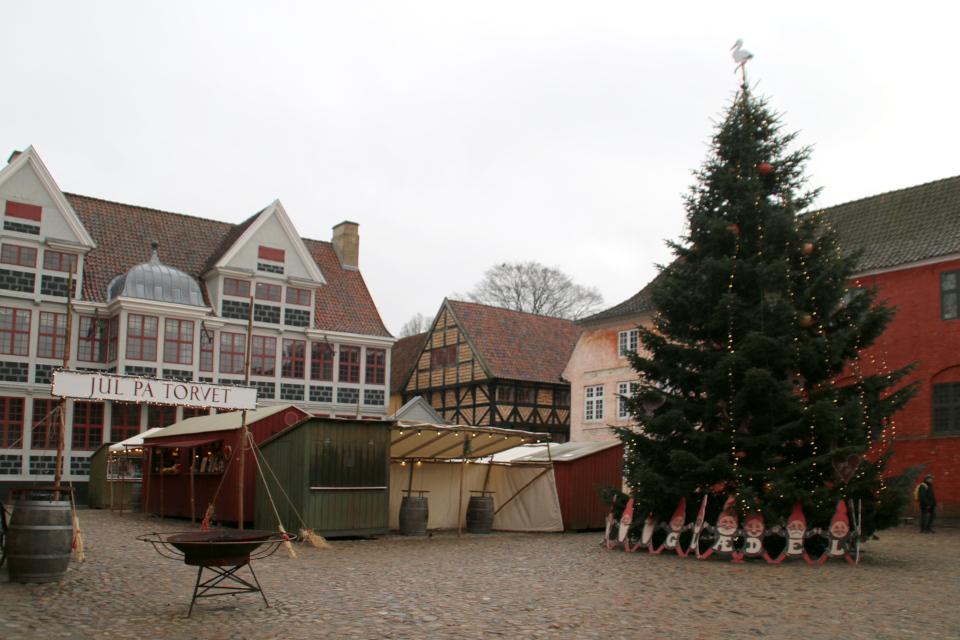 Рождественская ель на площади Старого Города