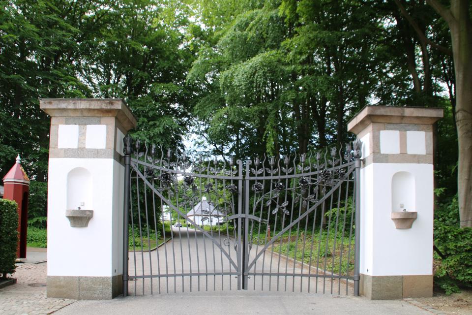 Ажурные кованые ворота с розами у входа в королевский парк Марселисборг