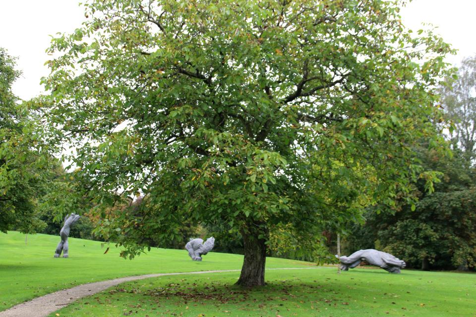 Дерево грецкий орех возле каменных львов