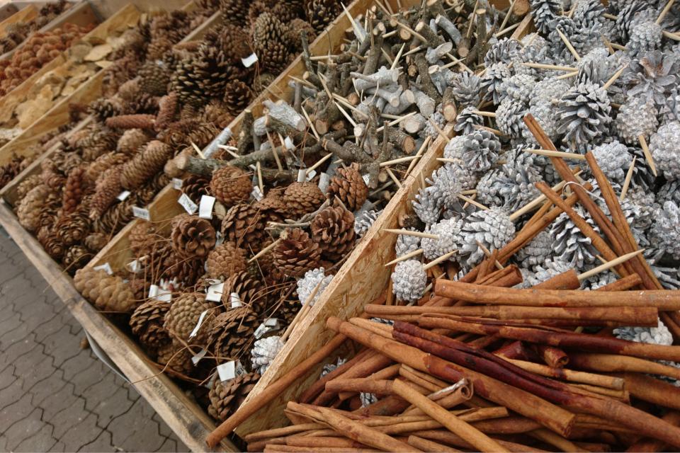 Палочки корицы, сосновые шишки и просто палочки
