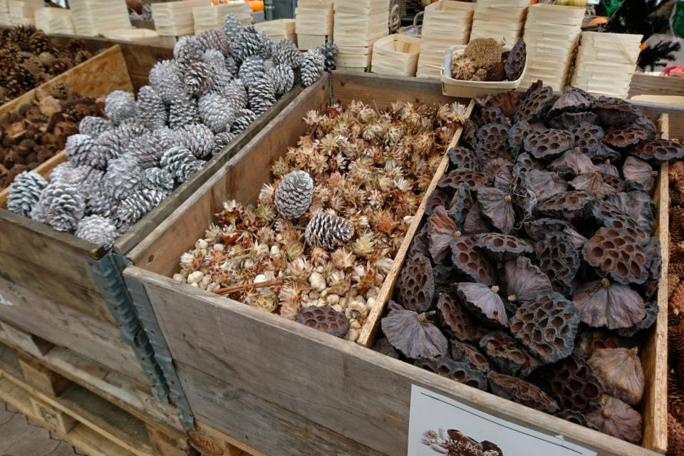 Шишки, плоды лотоса и сухоцветы для рождественских композиций