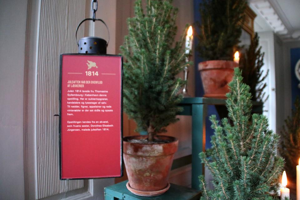 Рождество писательницы баронессы Томасина Гиллембург - 1814 год
