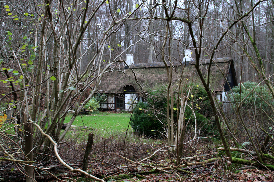 Фахверковый дом в лесу Марселисборг, Дания. 13 дек. 2020
