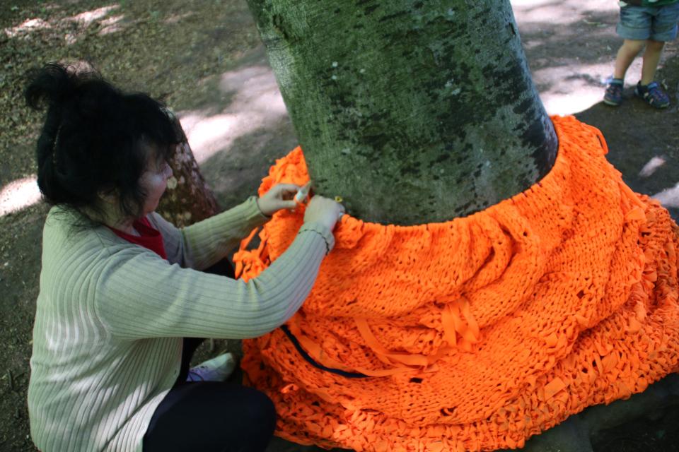 Обвязанное дерево в лесу Марселисборг
