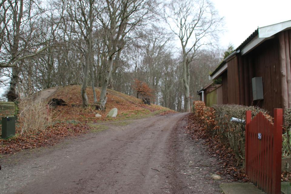 Курганы в лесу Киркесков, г. Орхус, Дания