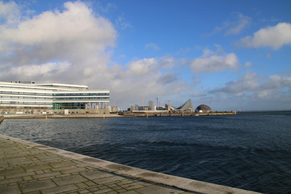 Орхус Navitas, Dome of Visions - 22 января 2021, Дания