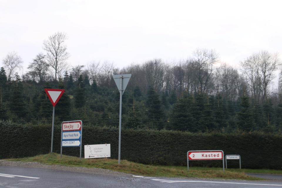 1 января 2021, Кастед, Дания
