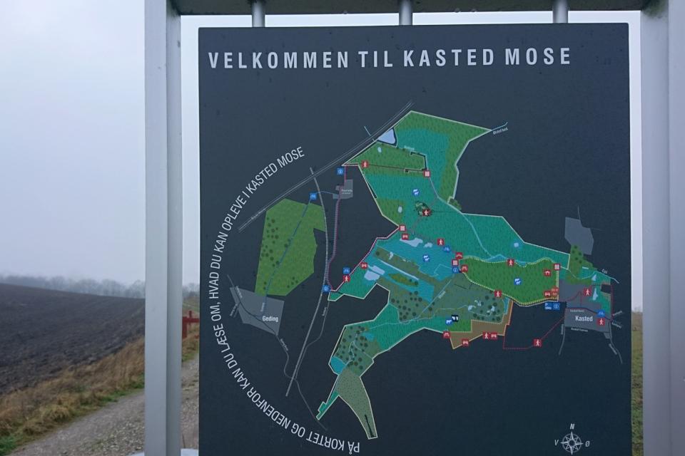 1 января 2021, Кастед, Дания. Kasted mose
