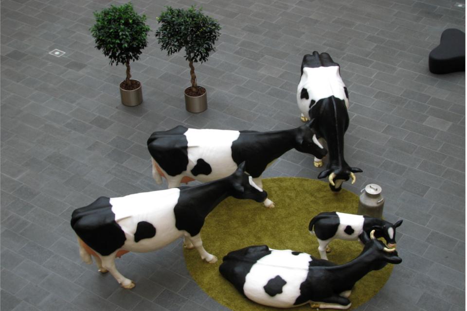 Коровы в зале здания Arla в Дании