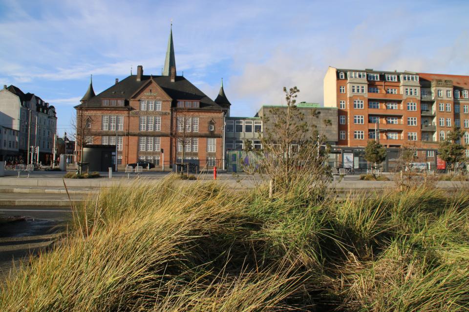 Орхус , Domkirke - 22 января 2021, Дания.